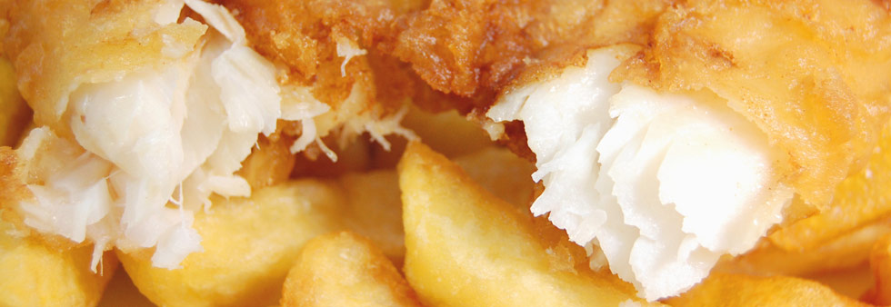Image result for fish and chip banner